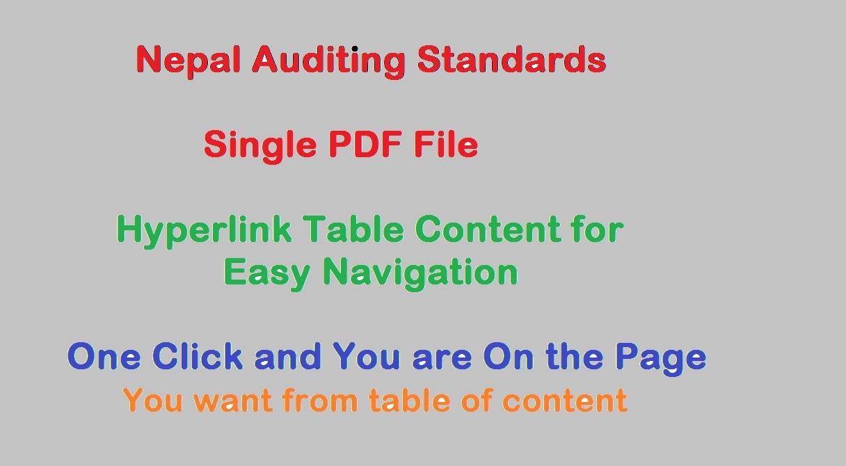 Pdf auditing standards